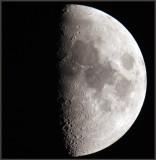 Half moon seen from my garden....