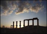 Palmyra silhouett at sunset