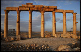 2000 yers old - The old ruins in Palmyra in evening light