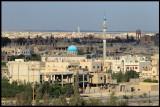 Palmyra New City