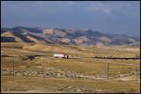 The desert road to Palmyra