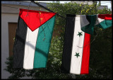 Flags for Arab unity and Syria