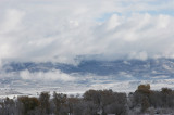 snowscape from deck 2.jpg