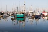 Boats reflecting