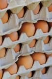 14 0973 Organic eggs