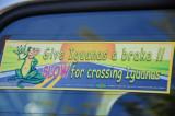 14 1067 Give iguanas a brake