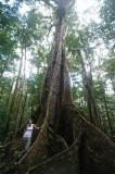 15 Woman with Tree 1007w