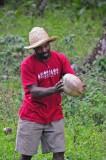 15 Elvis hunts down a coconut 1567