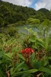 16 Freshwater Lake 1228
