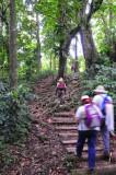 16 Trail to Middleham Falls 3059