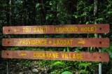 16 On Middleham Falls trail 3124