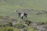 Mikael Nelin watching Long-billed pipit