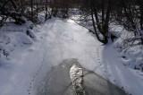 Creek Tracks