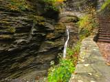 Sentry Bridge  and Falls - Watkins Glen State Park