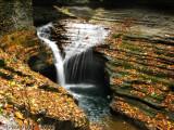 Glen of Pools Falls - Watkins Glen State Park