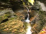 Spiral Gorge - Watkins Glen State Park