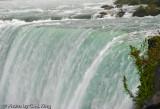 Canadian Falls II