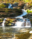 Water Fall - George W. Childs State Park