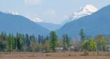 z P1080532 Haze obscures Glacier mountains seen fr sw of Columbia Falls.jpg