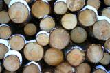 Logs End