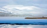 Snowy - Misty Morven