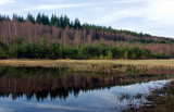 Fairy Loch  - Reflections