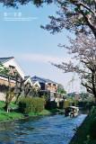 kyoto_220.jpg