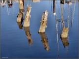 Pilings  River Reflections.jpg