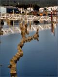 Florence OR Marina Reflections.jpg