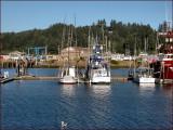 WB Fish Boats  Sea Gull2.jpg