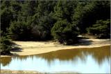Sand Dunes Oregon Coast - After the Rain