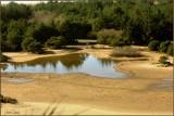 Sand Dunes Oregon After Rain.jpg