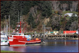 Fish Boat Grizzly Salmon Harbor