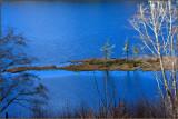 Tahkenitch Lake Shoreline