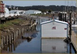 Florence Oregon  Fresh Crab Available