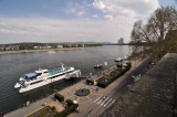 Rhine front