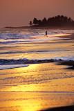 Brenu Beach 13