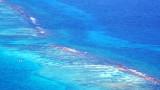 Coastal Reefs