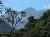 View of Pico Bonito National Park