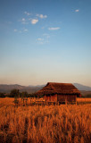 Hut at sunset in the field