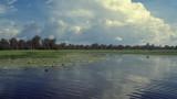 Yellow Waters Billabong