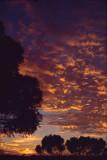 Sunrise near Kalgoorlie 2