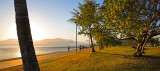 Cairns Esplanade at sunrise contre-jour