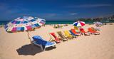 Bondi Beach - chairs and umbrellas