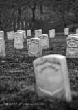Arlington National Cemetery in Black & White