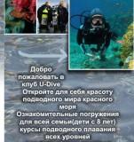 U-Dive Flyer
