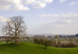 Whitbourne in damson blossom time - where our hearts wwere captured and partly remain; Malvern Hills in background