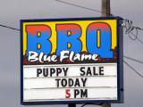 Yum! BBQ Puppy!