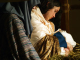 The Lamb in The Manger