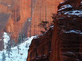 The Walls of Zion